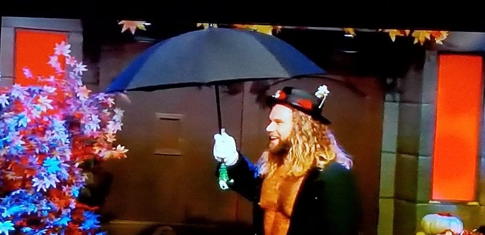 NEW Parrot Size Umbrella-