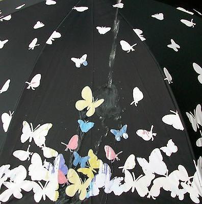"""46"""" Butterfly, Auto Rain/Sun"""