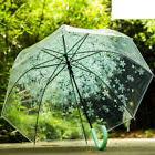 Cherry blossoms Print Umbrella Clear Transparent Rain Rainst