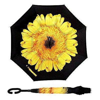 Owen Layer A_New Sunflower