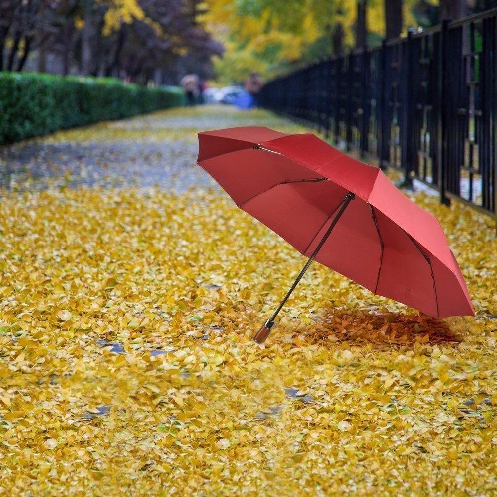 Travel Umbrella 10 Windproof Close RED